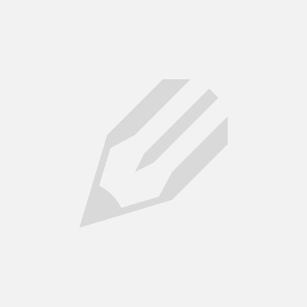 Nike Air Max BW Premium: окно с премиальным обзором