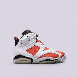 Air Jordan 6 Retro (384664-145)