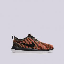 Nike  Roshe Two Flyknit (844833-009)