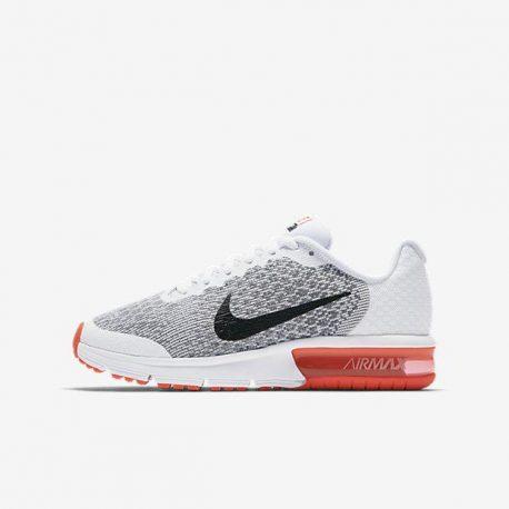 Nike Air Max Sequent 2 (869993-100)