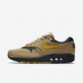 Мужские кроссовки Nike Air Max 1 Premium (875844-700)