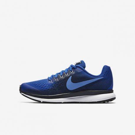 Nike Zoom Pegasus 34 (881953-405)