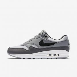 Nike Air Max 1 (AH8145-101)