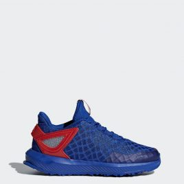 Кроссовки для бега Spider-Man RapidaRun adidas Performance (CQ0117_00)