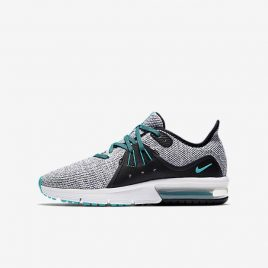 Nike Air Max Sequent 3 (922884-100)