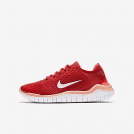Nike Free RN 2018 (AH3451-600)