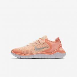 Nike Free RN 2018 (AH3457-800)