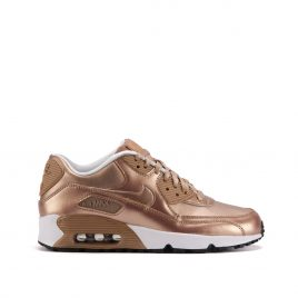 Nike Air Max 90 SE Leather GS «Bronze Pack» (Bronze) (859633-900)