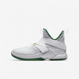 LeBron Soldier XII (AA1352-100)