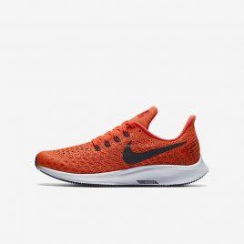 Nike Air Zoom Pegasus 35 (AH3482-600)
