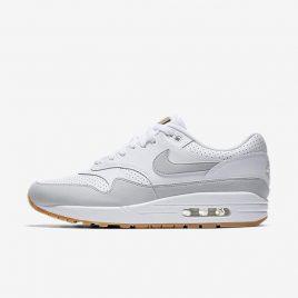 Nike Air Max 1 (AH8145-103)