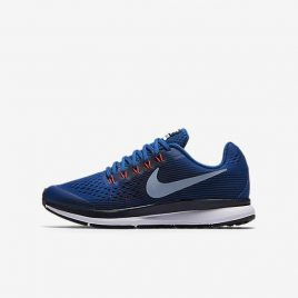 Nike Zoom Pegasus 34 (881953-401)