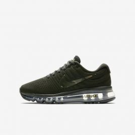 Nike Air Max 2017 (AT8757-300)