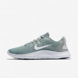 Nike Flex RN 2018 (AA7408-301)