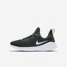 Nike Renew Rival (AH3469-001)