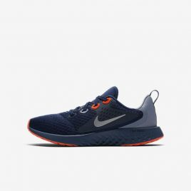 Nike Legend React (AH9437-401)