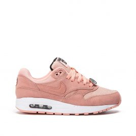Nike Air Max 1 GS «Have A Nike Day» (Rosa) (AT8131-600)