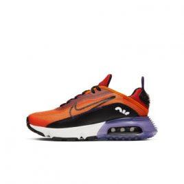 Nike Air Max 2090   (CJ4066-800)